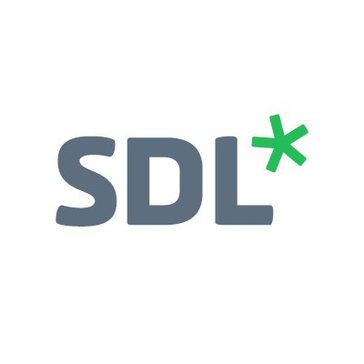 SDL Digital Strategy